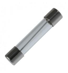 Stakleni 5x20mm 4A 250Vac brzi (F)