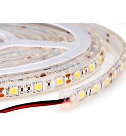 LED traka 4.8W/m toplo bela 60led IP20
