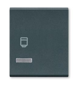 Tasteri za sklopke dvostruki - Antracit sa oznakom bojlera i indikacijom