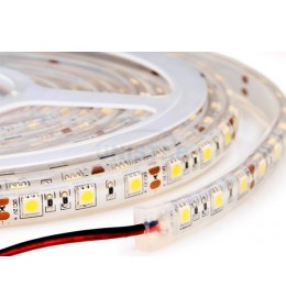 LED traka 4.8W/m hladno bela 60led IP44